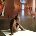 Escultura Desnudo Femenino en Bronce Oxidado